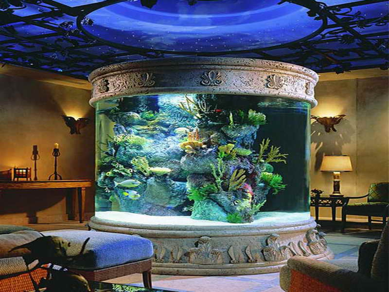 Fish Tank Decor Ideas: Fish Tank Decor Ideas With Dome Design ...