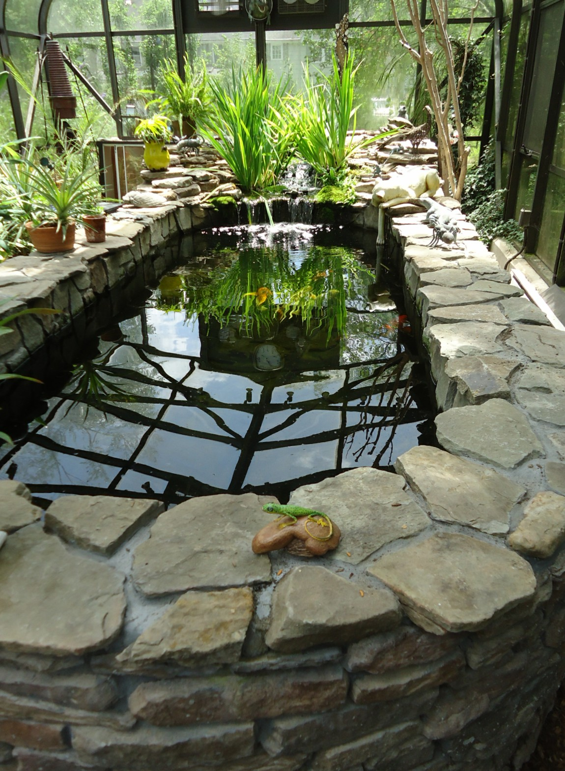 File:Outdoor heated fish tank enclosed by glass plus reflections.jpg